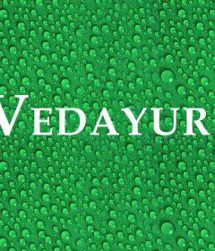 ¿Qué es Vedayur?